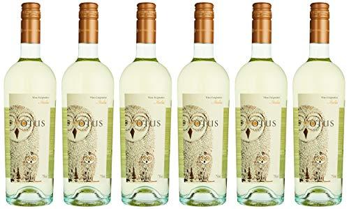 MGM Mondo del Vino Asio Otus Weiss Vino Varietale D'Italia Cuvee NV Halbtrocken (6 x 0.75 l)