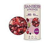 BUAH Beeren gefriergetrocknet I getrocknete Erdbeere, Cranberry getrocknet ohne Zucker I gefriergetrocknet Früchte (Vegan Glutenfrei Laktosefrei) Getrocknete Früchte Snack (138g)