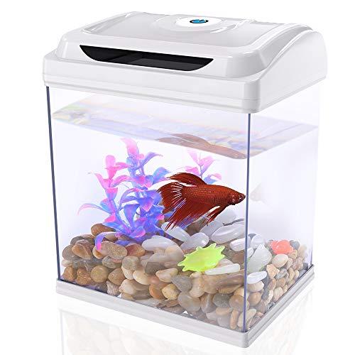 DADYPET Aquarium, Mini-Aquarium, Aquarium-Set, Fischzucht-Set für Medaka und Tropische Fische, kleines Aquarium mit Beleuchtung, energiesparend und leise, 1 Gallone