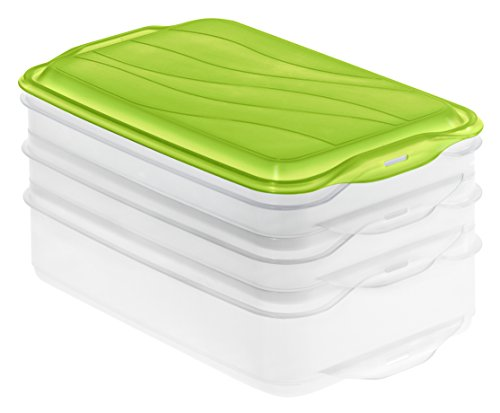 Rotho 1702805503 Stapelbox Foodcenter Rondo, 3-teilig Vorratsbox, Inhalt 2 x 0,75 L, 1x 1,35 L, Plastik, transparent / grün, 24 x 16 x 12 cm
