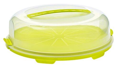 Rotho Tortenglocke 'Fresh' flach - Kuchen-Transportbox aus Kunststoff (PP), mit sicherem Verschluss und bequemem Tragegriff, spülmaschinengeeignet - grün/transparent, ca. 35,5x34,5x11,6 cm (LxBxH)