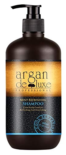 Arganöl Shampoo Herren in Friseur-Qualität for Men  Starkes Pflege Shampoo Männer Minze Menthol Fresh  Argan DeLuxe 300ml