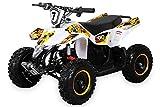 Miniquad Kinder ATV FOX XTR ELEKTRO 1000 Watt Pocket Quad Kinderquad Kinderfahrzeug Weiß/Gelb
