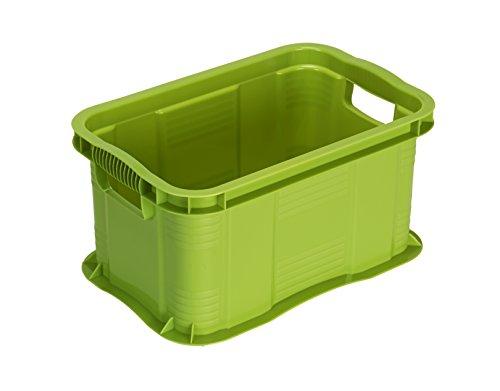 Rotho Agilo Aufbewahrungsbox 6 l, Kunststoff (PP), grün, 6 Liter / A5 (29 x 19 x 15,5 cm)