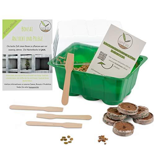 Bonsai Starter Kit Anzuchtset inkl. GRATIS eBook - Pflanzset aus Mini-Gewächshaus, Samen & Erde - nachhaltige Geschenkidee für Pflanzenfreunde