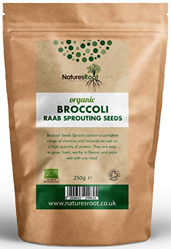 Nature Root Bio Brokkoli Sprießen Samen - Superfood | Nicht GVO | Microgreen Sprossen (250g)