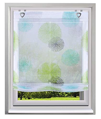 BAILEY JO Raffrollo mit Kreis-Motiven Druck Design Rollos Voile Transparent Vorhang (BxH 80x140cm, Grün1 mit U-Haken)