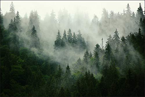 Muralo Fototapete Wald im Nebel 240 x 360 Vlies mystisch Panorama Naturreich - 167720496