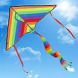 Drachen Delta Basic Bunt- Regenbogenfarben Einleiner inkl. 80m Drachenschnur für Kinder, Erwachsene und Familien | Einfach zu Fliegen bei Starkem Wind oder Leichter Brise | Leicht und Stabil