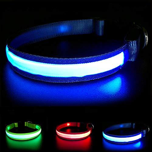 MASBRILL Wiederaufladbar LED Hund Halskette Halsband perfekt für Haustiere Hund - Wasserdicht (S, Blau)