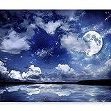 murando - Fototapete Nachthimmel 400x280 cm - Vlies Tapete - Moderne Wanddeko - Design Tapete - Wandtapete - Wand Dekoration - Landschaft Mond blau 10110903-27