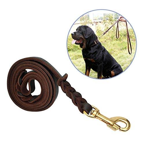 Hundeleine Leder, Focuspet 170X1.2cm Hundeleine aus Leder Geflochtene Leder Hundeleine Wasserdichte Hunde Lederleine Für Große Hunde Dunkelbraun