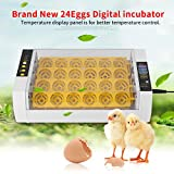 24 Eier Brutmaschine Brutkaste Inkubator Brutautomat Brutapparat Automatisch