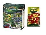 Bienen- und Hummelmagnet & Schöngesicht   Blumensamen von Quedlinburger Saatgut