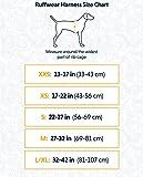Ruffwear Ganztags-Hundegeschirr, Mittelgroße Hunderassen, Größenverstellbar, Größe: M, Grau, Front Range Geschirr, 30501-025M