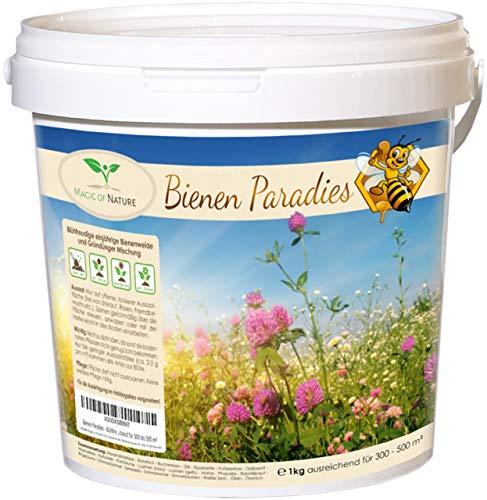 Bienen Paradies - Blühfreudige Bienenweide und Gründünger Mischung (1 kg - ausreichend für 300 bis 500 m²)