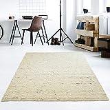 Taracarpet Moderner Handweb Teppich Alpina handgewebt aus Schurwolle für Wohnzimmer, Esszimmer, Schlafzimmer und die Küche geeignet (070 x 130 cm, 60 Beige meliert)