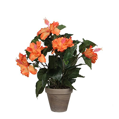 MICA Decorations Hibiscus IN Stan Topf, Polyester, orange, 30 x 30 x 40 cm, 6-Einheiten