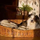Weidenkorb 100 cm für Hunde sind bequem und urgemütlich aus geschälten, naturbraunen Vollweiden der Hundekorb ist äußerst robust der Korb ist ein reine Naturprodukt