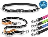 Thunderdog Jogging Hundeleine Sport Laufgürtel Leine elastisch reflektierend 120cm Flexibel mit Bauchgurt (Orange)