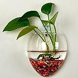 Rosepoem Wandbehang Pflanzen Pflanzer Terrarien kreative Mode Glasvase Home Decor Wall Pflanzen nicht weißen kleinen Nagel