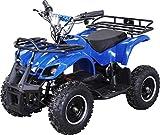 Elektro Kinder Miniquad TORINO 800 Watt ATV Pocket Quad Kinderquad Kinderfahrzeug (Blau)