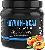 GYM - NUTRITION BCAA + VITAMIN B6 | Hochdosiertes Pulver | Leucin | Isoleucin | Valin 2:1:1 | In Deutscher Premium Qualität | Vegan | Geschmack Ice Tea Peach