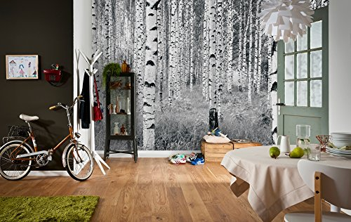 Komar Vlies Fototapete'Woods', 368 x 248 cm, 4 Teile