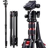 K&F Concept Stativ 200cm/78 inches Kamera Stativ, Aluminium Kamerastativ Fotostativ Reisestativ mit Einbeinstativ für Canon Nikon Sony Olympus inkl. Kugelkopf Schnellwechselplatte und Stativtasche