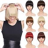 TESS Pony Haarteil Extensions Clip in wie Echthaar Ombre Haarverlängerung Franse Bang Haarteile glatt 2 Clips günstig Extension 30g Mittelblond/Blond