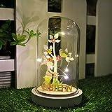 Valery Madelyn Ostern Deko 19cm Glasglocke LED Beleuchtung Glaskuppel Ostern Frühling Dekoration mit Lichterkette mit Holzboden und Ostern Schrift Batteriebetrieben Lampe MEHRWEG Verpackung