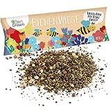 Bienenwiese Blumenmischung, Premium Bienen Saatgut für 100 qm Bienenweide, Bienen- und Hummelmagnet von OwnGrown, bienenfreundliche Blumensamen ein- und mehrjährig, 100g Bienensaatgut
