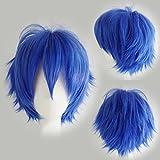 Cosplay Perücke Blau Anime Wig Kunsthaar Perücken Frauen Karnevalsperücke Fasching günstig Wigs