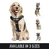 BELISY Gepolstertes Hundegeschirr Reflektierend aus bestem Nylon & Kunstleder - Leicht Verstellbar - S, M, L - Schwarz - Y-Geschirr mit Griff für mittelgroße Hunde - Weste - Dog Harness