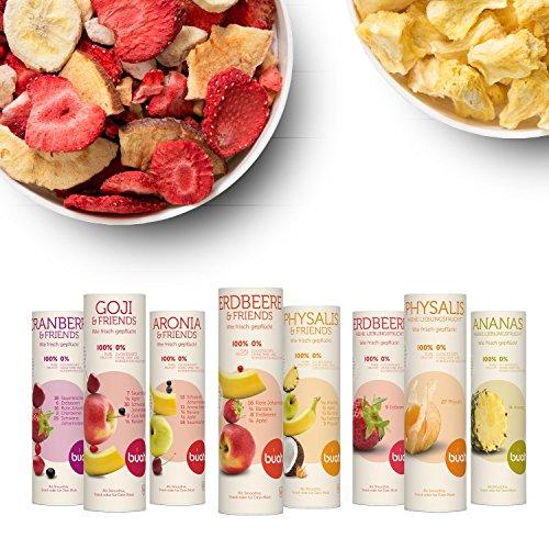 Gefriergetrocknete Früchte & Superfoods für leckere Früchte-Smoothies und gesunde Snacks zwischendurch   BUAH SMOOTHIE-PROBIER-KORB   100% Frucht   0% Zusätze   Healthy Snacks (16g-32g)