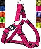 DDOXX Hundegeschirr Step-In Air Mesh in vielen Farben & Größen für kleine, mittelgroße & große Hunde   Geschirr Hund klein groß verstellbar   Brustgeschirr Welpen Auto   Pink, M