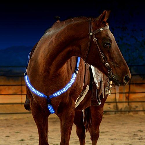 """LED-Pferdegeschirr, über USB wiederaufladbar, beste Sichtbarkeit (""""High Visibility"""") beim Reiten, verstellbare, robuste und komfortable """"Hi-Viz""""-Sicherheitsausrüstung für ein sichtbares Pferd"""