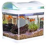 Sweetypet Aquarium: Transport-Fischbecken mit Filter, LED-Beleuchtung und USB, 3,3 Liter (Aquarien)