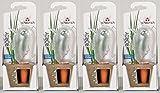 4er-Set Bewässerungskugel Wasserspender *Bördy L* in transparent - H20cm/220ml