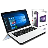 ASUS (17,3 Zoll) Notebook (Intel N4200 Quad Core 4x2.50 GHz, 8GB RAM, 1000GB S-ATA HDD, Intel HD 505 Graphic, HDMI, Webcam, USB 3.0, WLAN, DVD-Brenner, Windows 10 Professional 64-Bit) #5725