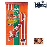 Hikari Koifutter Wheat Germ large 10 kg