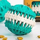 Premium Snackball für Hunde von PFOTENOLYMP - Kauspielzeug zur Unterstützung der Zahnpflege
