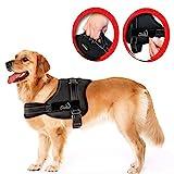 Lifepul Powergeschirr Brustgeschirr für aktive Hunde, Hals- und Schulterbereich weich gepolstert Größe L, schwarz