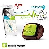 Kippy Vita S Pet GPS Tracker | GPS & Aktivitäts-Monitor für Hunde und Katzen mit einem Gewicht von 5 kg oder mehr | Erfordert ein Data Service Abonnement (separat erhältlich)