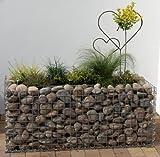 HOCHBEET Steinkorb-Gabione eckig, Maschenweite 5 x 10 cm, Länge 100 cm, Wandstärke 10 cm, Spiralverschluss, galvanisch verzinkt (100 x 50 x 50 cm)