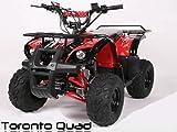 Toronto 125cc RG 7' Automatik + RG   MIDI QUAD (Rot)