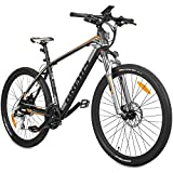 Hecht Grimis Elektro Mountainbike E-Bike/Li-Ion 36V / 10,2Ah / Scheibenbremsen/RST-Federgabel/Shimano-Schaltung (Silber)