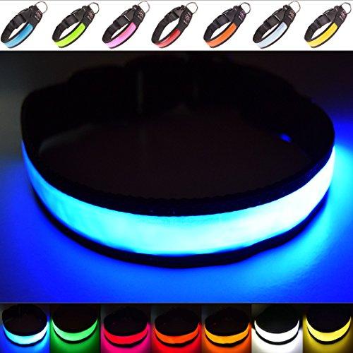 LED-Halsband für Hunde, extrahell, wiederaufladbar via USB, hohe Sichtbarkeit und verbesserte Sicherheit, 4Farben, 3Größen