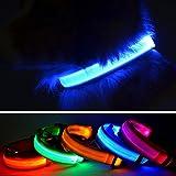 domii. Home LED Pet Dog Halsband, USB wiederaufladbar Night Sicherheit blinkendes Halsband Leuchthalsband Hunde Halskette Loop Welpen Illuminating, mit verstellbare Schnalle