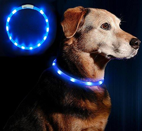 LED Leuchthalsband Hunde Halsband - Anicoll USB wiederaufladbar - Längenverstellbarer Haustier Sicherheit Kragen für Hunde und Katzen- 3 Modus 12 Lichte (blau)